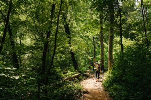 woman on forest walking trail
