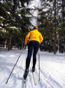 Ski vacation cross country forest trail