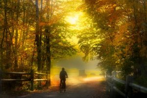 Person biking in the countryside surrounded by fall foliage, one of the best hings to do in Brattleboro VT